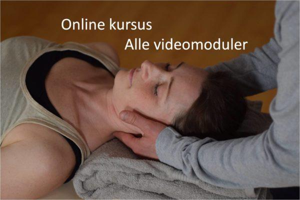 onlinekursus manuel behandling